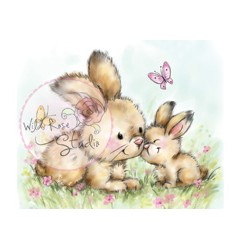 Wild Rose Studio`s A7 stamp set Spring Bunnies
